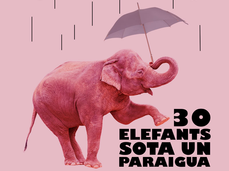 Teatre: '30 elefants sota un paraigua'