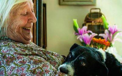 La Fundación Hope & Help se encarga de cuidar las mascotas de la gente mayor