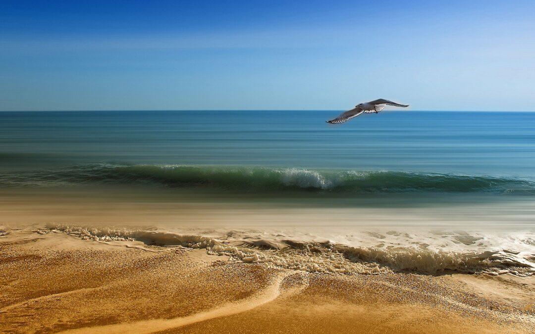 Salud Natural: «Los beneficios del agua de mar y los minerales»